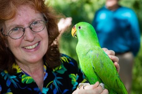 Wildlifefest-Parrot